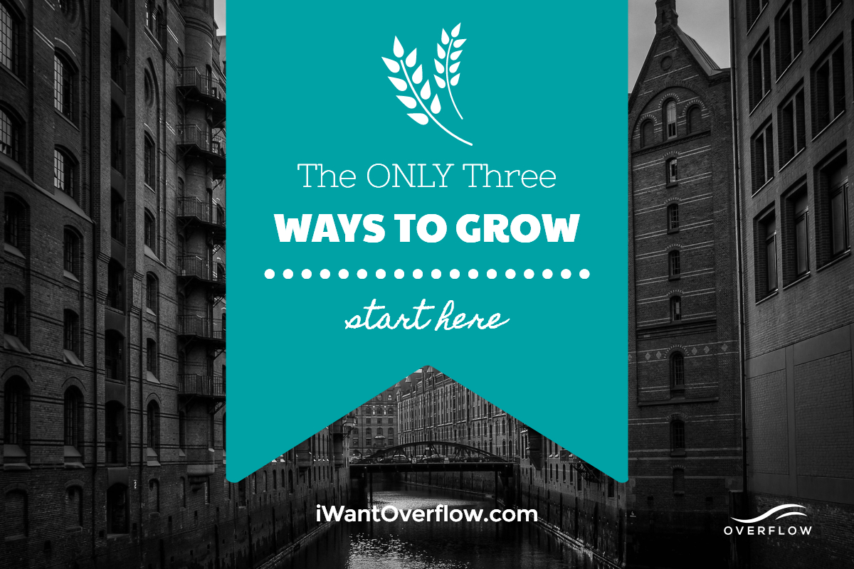 The Only 3 Ways to Grow A Company